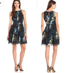 Ted Baker Ameda Twilight Dress